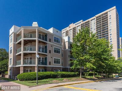 Falls Church Condo For Sale: 5575 Seminary Road #308