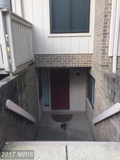Vienna Rental For Rent: 2493 Glengyle Drive #146