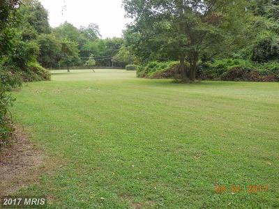 Centreville Residential Lots & Land For Sale: Summit Street