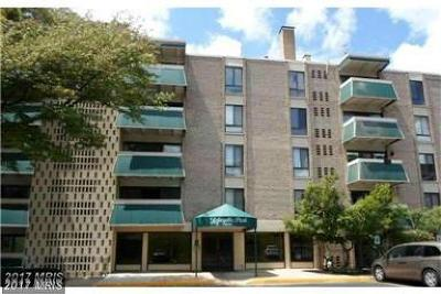 Falls Church Condo For Sale: 6133 Leesburg Pike #402