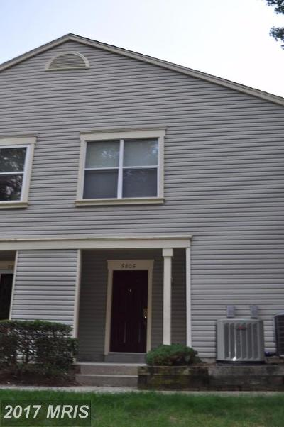 Clifton Rental For Rent: 5805 Orchard Hill Lane #5805