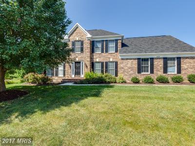 Centreville Single Family Home For Sale: 6208 Secret Hollow Lane