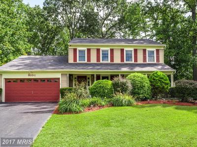 Burke Single Family Home For Sale: 9101 De Soto Court