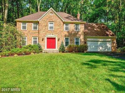 Fairfax Station Single Family Home For Sale: 7302 South View Court