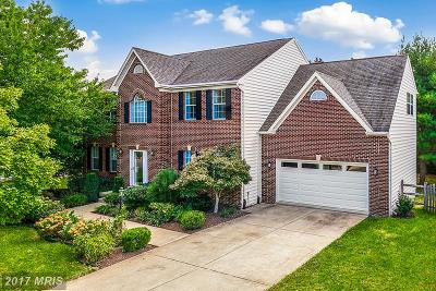 Reston Single Family Home For Sale: 12823 Tournament Drive
