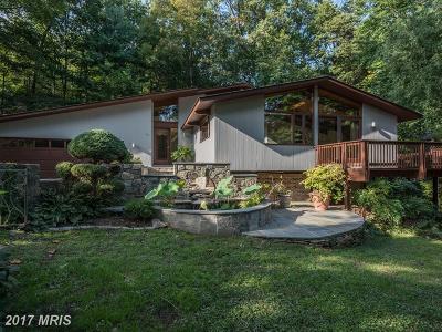 Reston Single Family Home For Sale: 1583 North Village Road