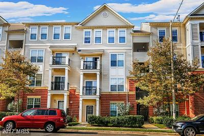 Fairfax Condo For Sale: 11373 Aristotle Drive #9-407