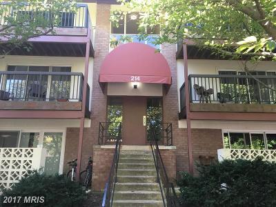 Vienna Rental For Rent: 214 Park Terrace Court SE #79