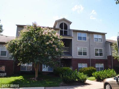 Fairfax Condo For Sale: 11709 Olde English Drive #D
