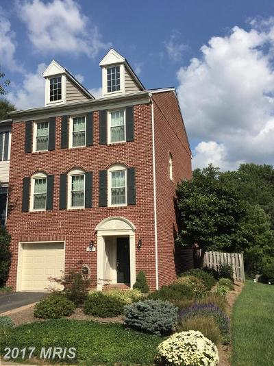 Falls Church Rental For Rent: 2089 Gillen Lane