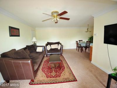 Alexandria Rental For Rent: 3706 Rosser Street #204