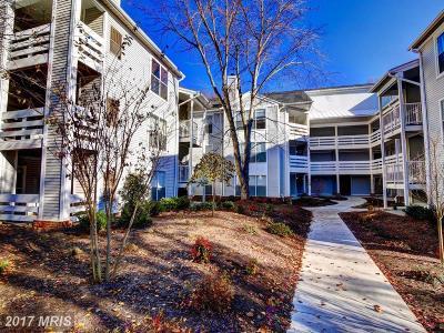 Fairfax, Fairfax City Condo For Sale: 10300 Appalachian Circle #210
