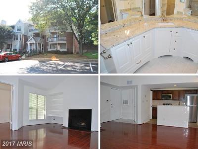 Fairfax Condo For Sale: 3912 Penderview Drive #536