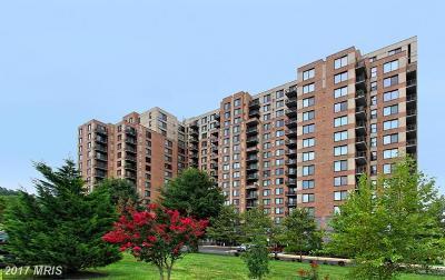 Alexandria Rental For Rent: 2451 Midtown Avenue #1103