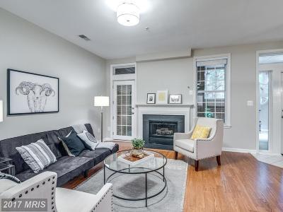 Fairfax Condo For Sale: 1349 Garden Wall Circle #608