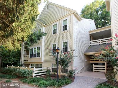 Fairfax Condo For Sale: 2233 Lovedale Lane #401A