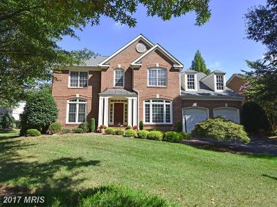 Fairfax Single Family Home For Sale: 12586 Misty Creek Lane