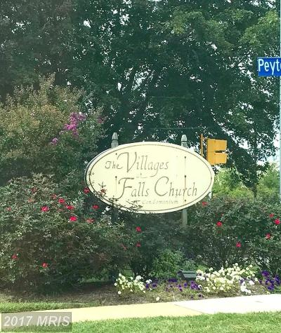 Falls Church Rental For Rent: 2922 Willston Place #19