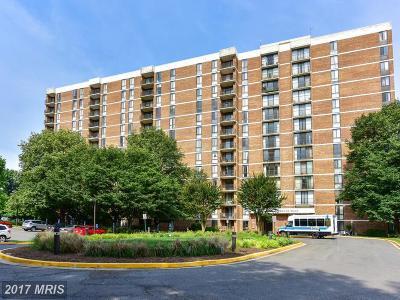Falls Church Rental For Rent: 2300 Pimmit Drive #1016