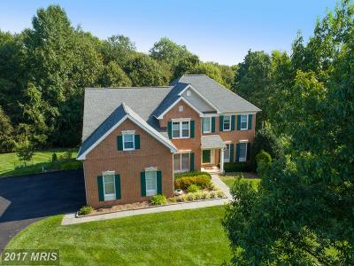 Reston, Herndon Single Family Home For Sale: 1286 Gatesmeadow Way