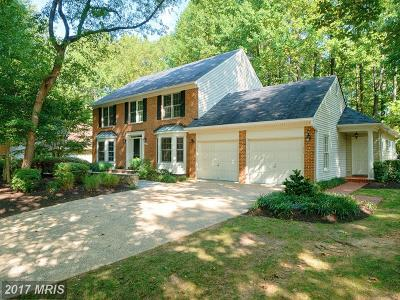 Reston Single Family Home For Sale: 1289 Golden Eagle Drive