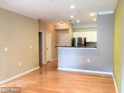 Washington, Montgomery, Fairfax Rental For Rent: 11327 Aristotle Drive #409