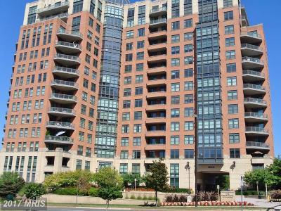 Washington, Montgomery, Fairfax Rental For Rent: 1830 Fountain Drive #403