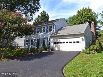 Herndon Single Family Home For Sale: 3303 Wrenn House Court