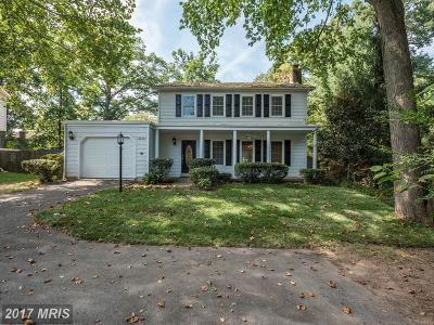 Chantilly Single Family Home For Sale: 13636 Poplar Tree Road