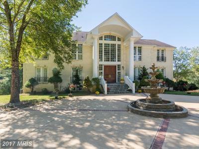 Great Falls Rental For Rent: 9817 Mill Run Drive