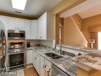 Fairfax Condo For Sale: 11306 Westbrook Mill Lane #302