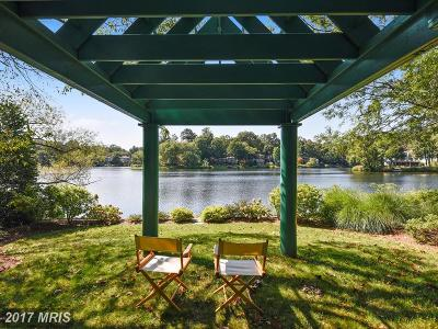 Reston Single Family Home For Sale: 1486 Waterfront Road