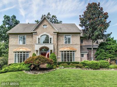 Reston Single Family Home For Sale: 12042 Creekbend Drive