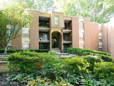 Annandale Condo For Sale: 3368 Woodburn Road #APT T2