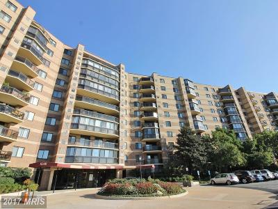 McLean Condo For Sale: 8340 Greensboro Drive #507