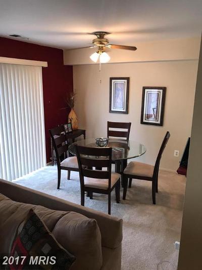 Fairfax Condo For Sale: 3829 El Camino Place #11