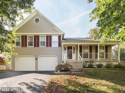 Centreville Single Family Home For Sale: 5710 Rocky Run Drive