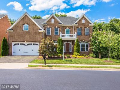 Fairfax Single Family Home For Sale: 3981 Woodberry Meadow Drive