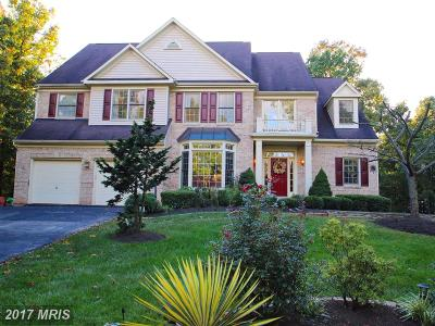 Reston, Herndon Single Family Home For Sale: 12121 Windsor Hall Way