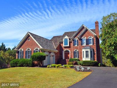 Centreville Single Family Home For Sale: 6201 Point Circle