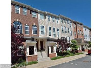Centreville Crossing Rental For Rent: 6075 Wicker Lane #146