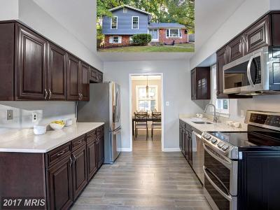 Vienna Single Family Home For Sale: 8298 Elm Shade Court