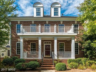 Fairfax Single Family Home For Sale: 2873 Star Opal Drive