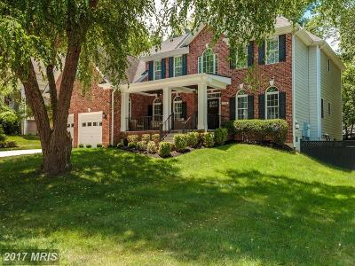 McLean Single Family Home For Sale: 1224 Earnestine Street