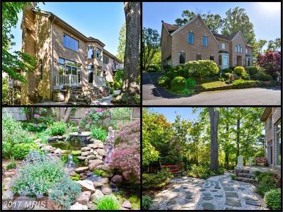 Herndon Single Family Home For Sale: 1375 Dominion Ridge Lane