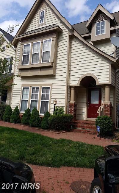 Lorton Single Family Home For Sale: 9163 Stonegarden Drive