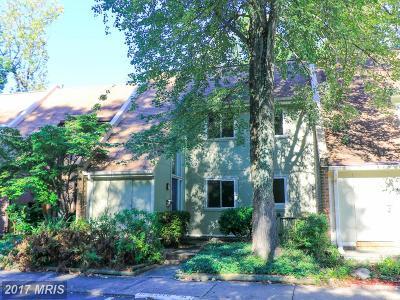 Reston Rental For Rent: 1441 Greenmont Court