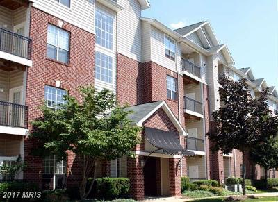 McLean Condo For Sale: 1521 Spring Gate Drive #10313
