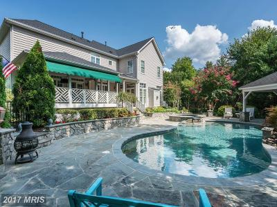 Centreville Single Family Home For Sale: 15019 Starry Night Lane
