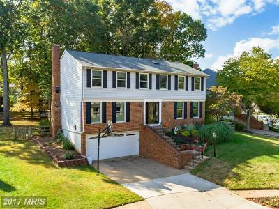 Herndon Single Family Home For Sale: 1378 Rock Chapel Road